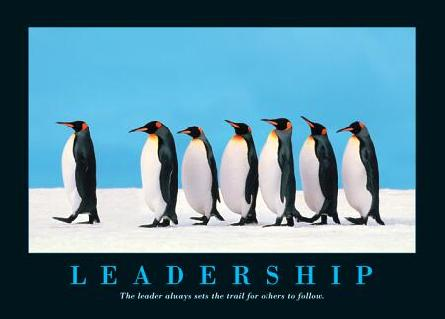leadership_penguin-23590