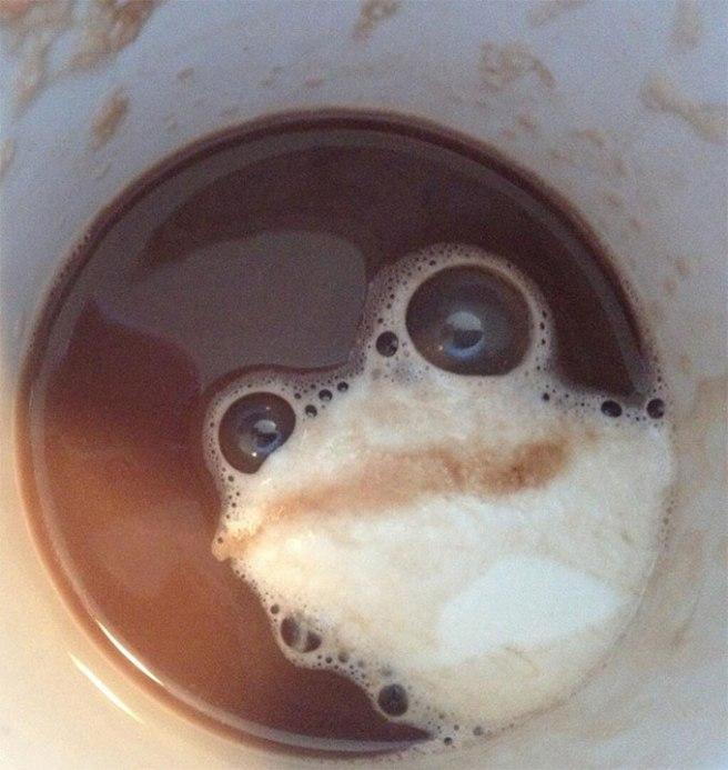 FrogInCafeLatte